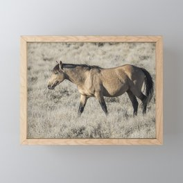 The Self-Assured Saunter of a Stallion Framed Mini Art Print