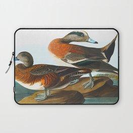 American Wigeon Audubon Birds Vintage Scientific Hand Drawn Illustration Laptop Sleeve