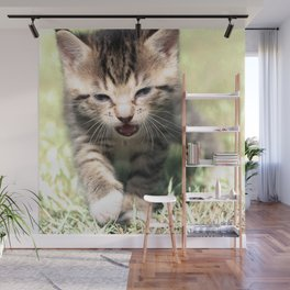Katze, Cat Wall Mural
