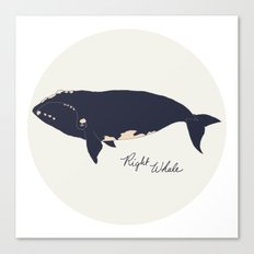 Right whale Canvas Print