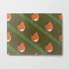 Robin bird Metal Print