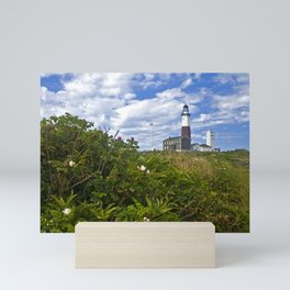 Montauk Point Lighthouse Mini Art Print