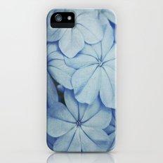 Blue Plumbago iPhone (5, 5s) Slim Case