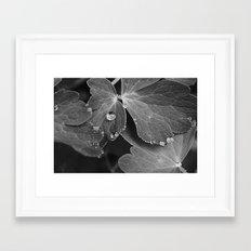 Black & White Spring  Framed Art Print