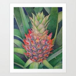 Ornamental Pineapple Art Print