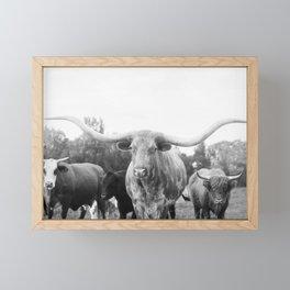 Texas Longhorn and Friends Framed Mini Art Print