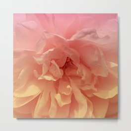 Blended Rose Macro Metal Print
