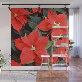 Beautiful Red Poinsettia Christmas Flowers Wall Mural