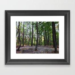 Hoosier National Forest Framed Art Print