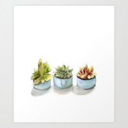 Succulents watercolor painting Art Print