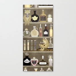 potions Canvas Print