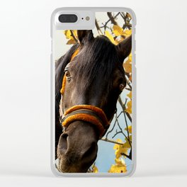 Curious Horse Looking Through The Kitchen Window Clear iPhone Case