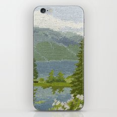 Found Tapestry iPhone & iPod Skin