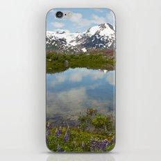 Alpine Pond iPhone & iPod Skin