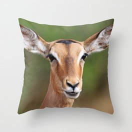 Female Impala, Africa wildlife Throw Pillow