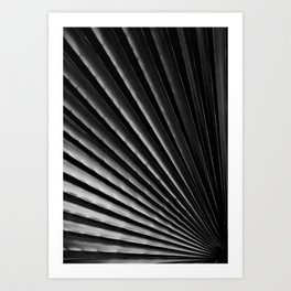 Tropical Darkroom #252 Art Print