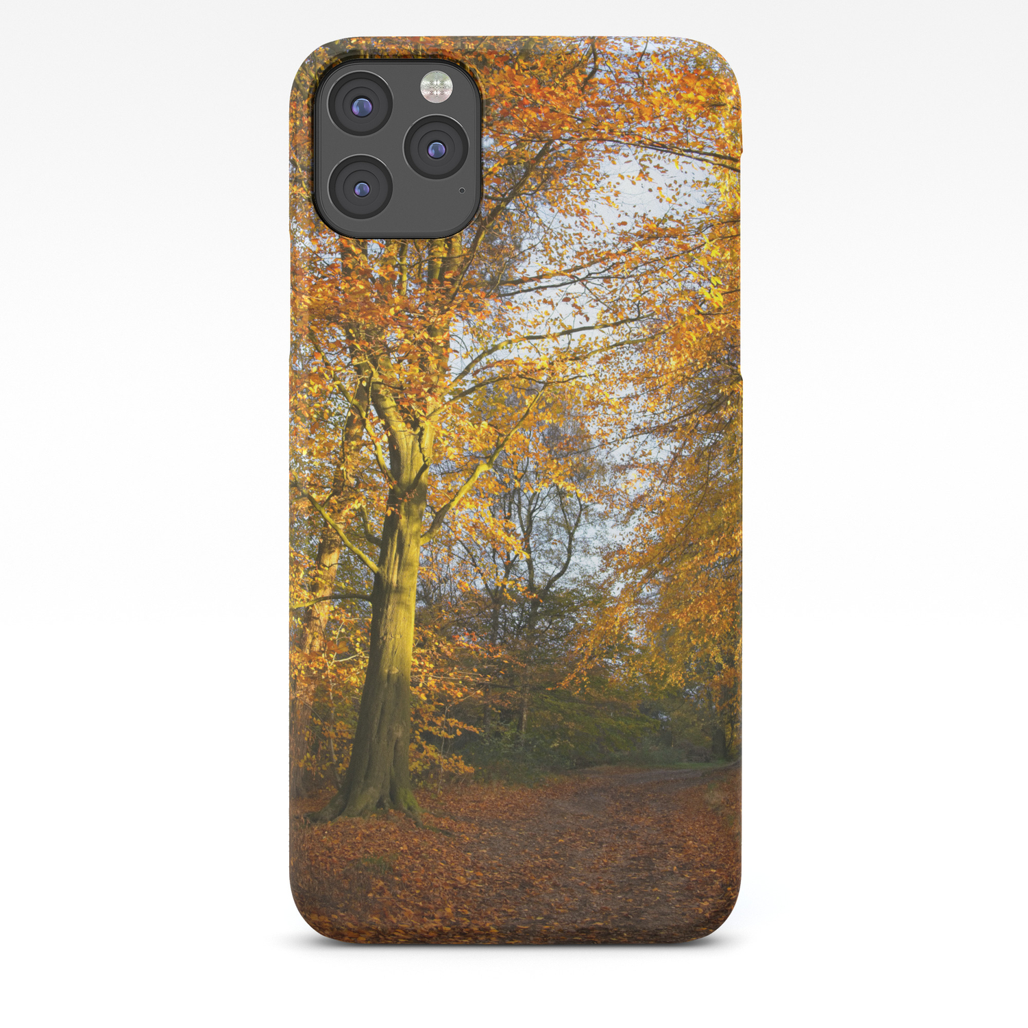 Long Forest Walk iphone 11 case
