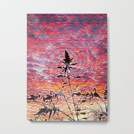 Leaf shadow at sunset Metal Print