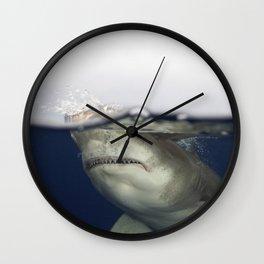 Oceanic Whitetip Shark, Split Image Wall Clock