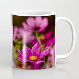 Cosmos Bipinnatus Coffee Mug