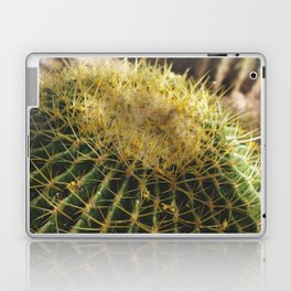 Golden Barrel Cactus Laptop & iPad Skin