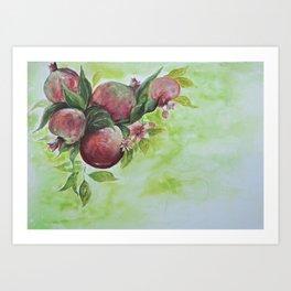 Pomegranate beauty Art Print