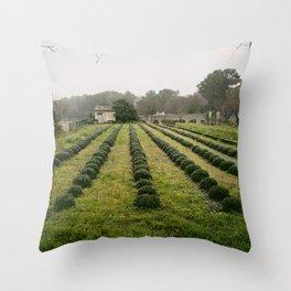 Van Gogh's View  Throw Pillow