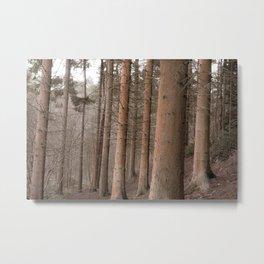 Vintage woodland Metal Print
