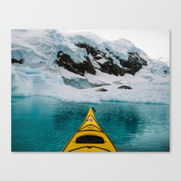 Glacial Waters and Crabeaters Canvas Print