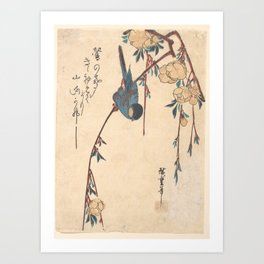 Weeping Cherry, Hiroshige Art Print