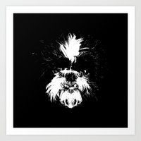 shih tzu Art Prints featuring Shih Tzu! by Jay Taylor