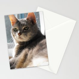 King-Cat Stationery Cards