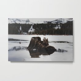 Frozen Lake Wonderland Metal Print