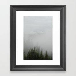 Foggy Trees Framed Art Print