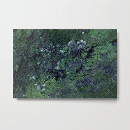 Twilight Moss Metal Print