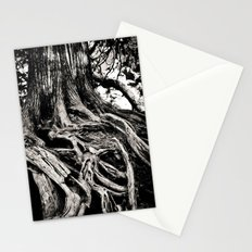 Beauty in the old Stationery Cards