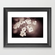 I Told Him To Go Away, And He Simply Said No Framed Art Print