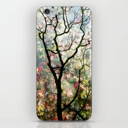 Passing Through, While looking for you iPhone Skin