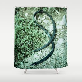 GREEN PICTURE OF A TIRE Shower Curtain