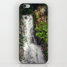 Rainforest Waterfall iPhone & iPod Skin