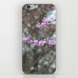 Red Bud in Spring iPhone Skin