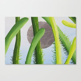 a bugs perspective  Canvas Print