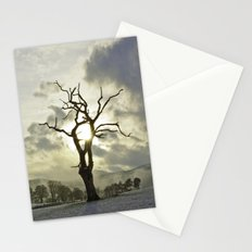 Light of the Tree Stationery Cards