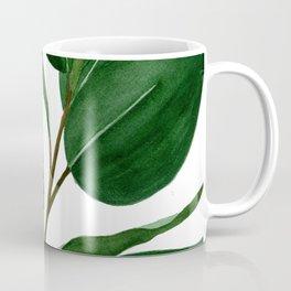 Watercolor Rubber Tree Coffee Mug
