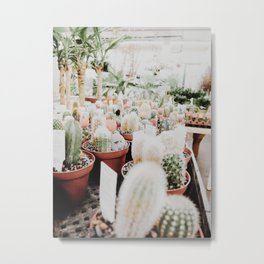 Cacti at the Flower Shop Metal Print