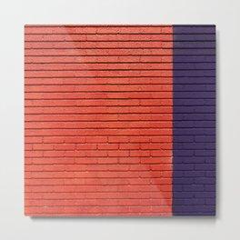 red & blue bricks Metal Print