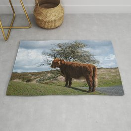 Highland Cow At Dartmoor National Park Rug