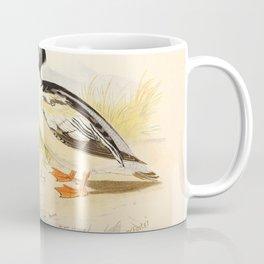 mergus castor1 Coffee Mug