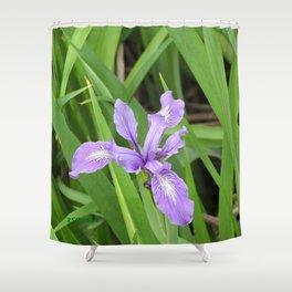 Pale Iris Shower Curtain
