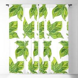 Fresh Green Leaves Blackout Curtain